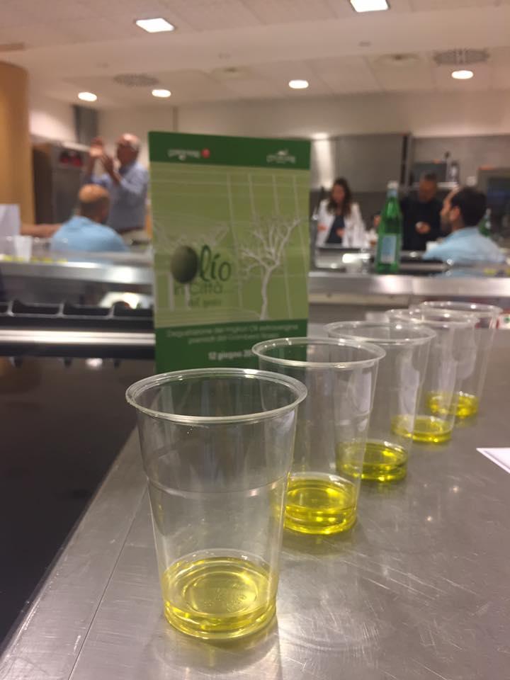 oli extravergine di oliva